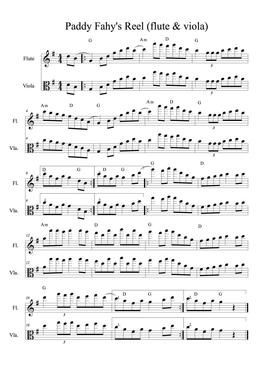 PaddyFahyReel(flute&viola)